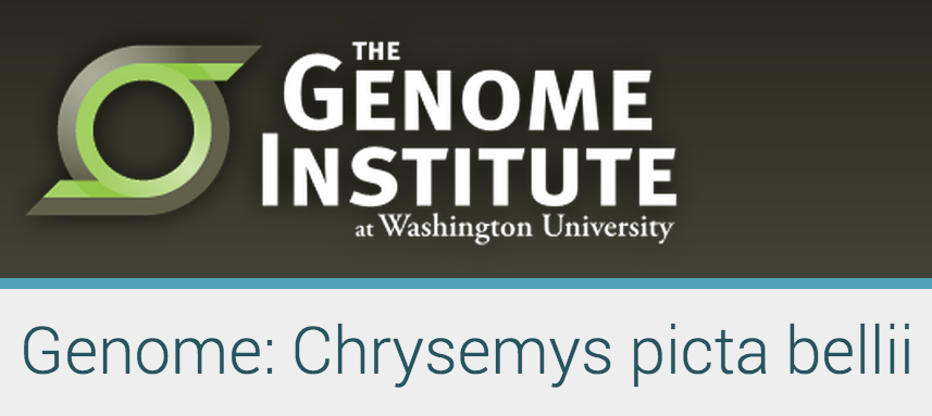 The Genome Institute